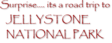 Surprise…. its a road trip to JELLYSTONE NATIONAL PARK
