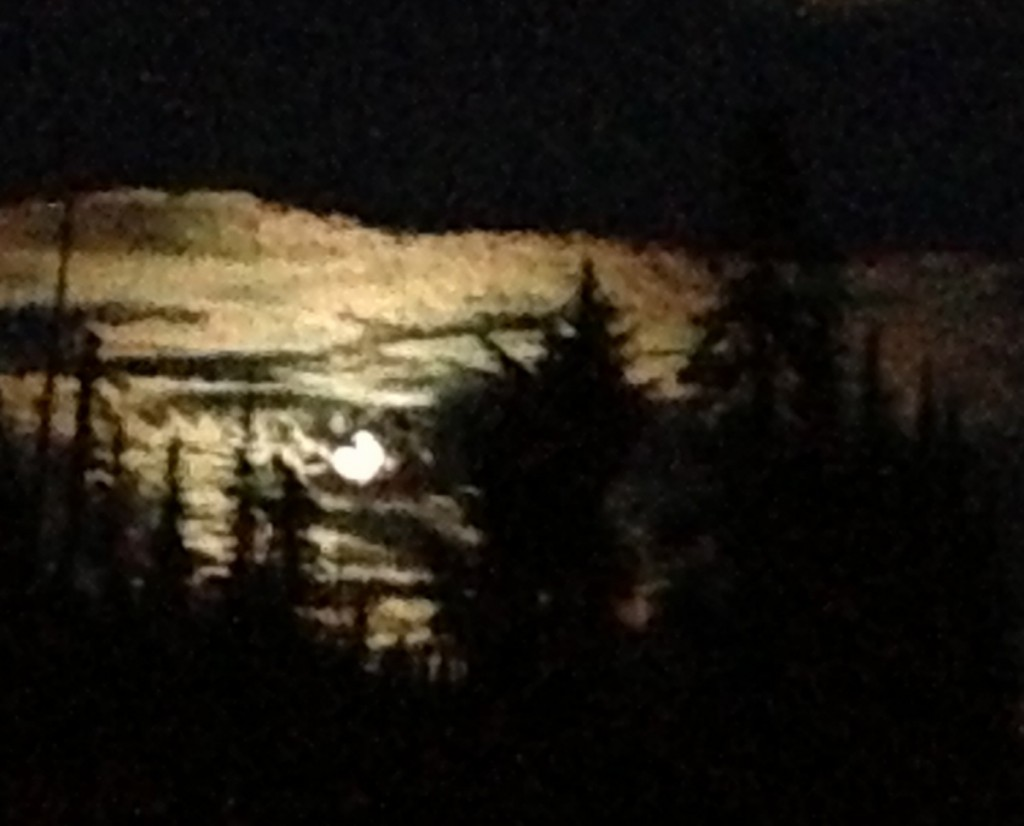 LITTLE LATER with the moon behind trees kh